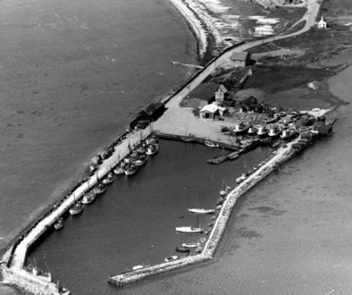 Lynæs havn og strand